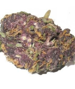 granddaddy Purple Kush